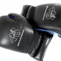 French Style Boxing Gloves 1